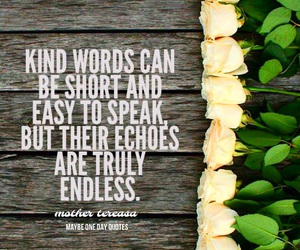 kind, quote, and roses image