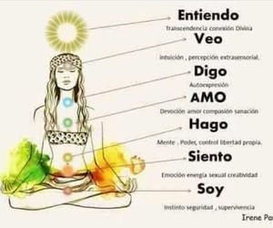 buda, mente, and universo image
