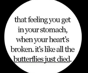 butterflies, quotes, and heart image