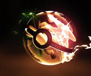 pokemon and raichu image