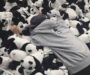 boy, panda, and ulzzang image