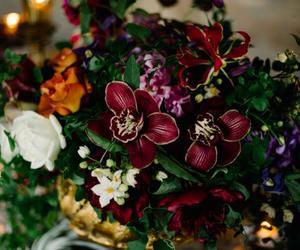 arrangement, flower, and orchid image
