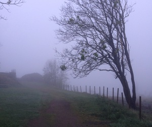 camera, cool, and fog image