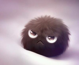 cute and angry image