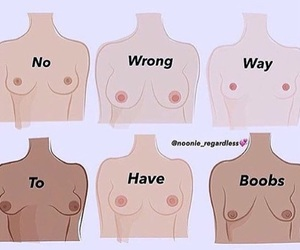 boobies, no wrong way, and boobs image