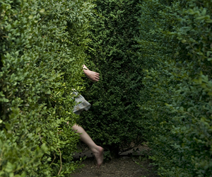 green, nature, and maze image