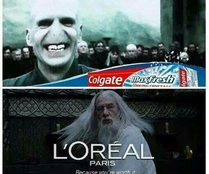 harry potter, funny, and colgate image