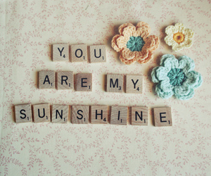 sunshine, flowers, and quote image