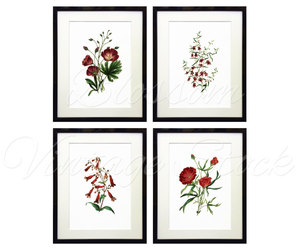bird, flower prints, and etsy image