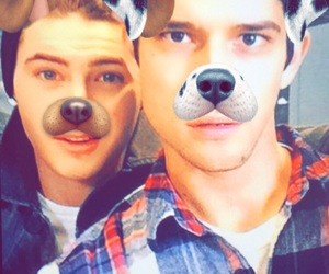 puppy, teen wolf, and tyler posey image