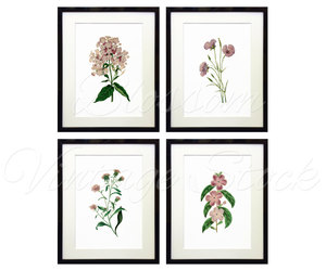 etsy, vintage flowers, and floral art image