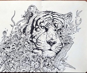 drawing, animal, and doodle image