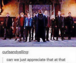 harry potter, weasley, and order of the phoenix image
