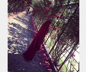 roses, vienna, and khimar image