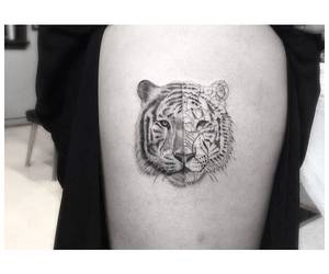 arm, tiger, and black and white image