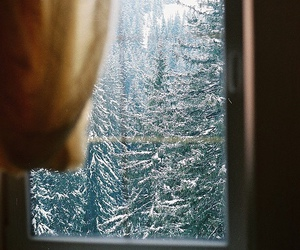 snow, tree, and vintage image