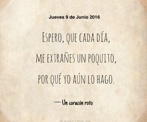 amor, desamor, and diario image