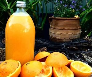 fruit, orange, and healthy image