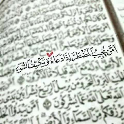 quraan, allah, and الله image