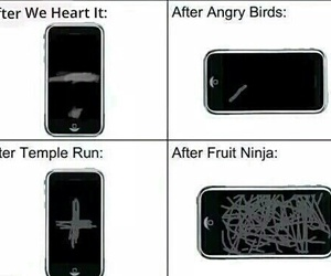 funny, fruit ninja, and angry birds image