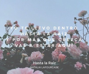 amor, natalia, and hasta la raíz image