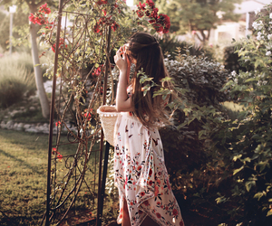blogger, garden, and romantic image