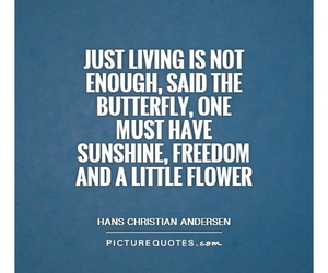 butterfly, flower, and quotes image
