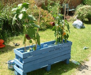 pallet projects, pallet planters, and pallet planter box image