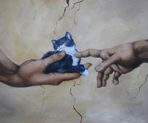 art, cat, and hands image