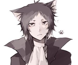 bungou stray dogs, anime, and akutagawa image