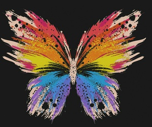 butterfly, wallpaper, and art image