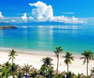 beach, jamaica, and paradise image