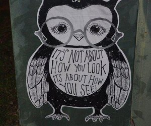 owl, wise, and text image