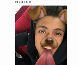 adorable, guy, and dog filter image