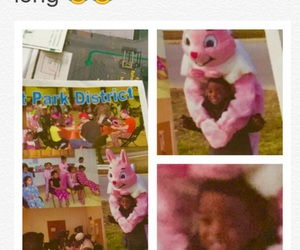 bunny, easter, and funny image