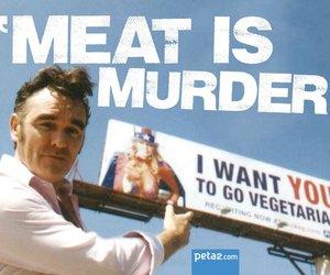 vegetarian, morrisey, and morrissey image
