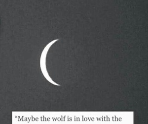 moon, wolf, and quote image