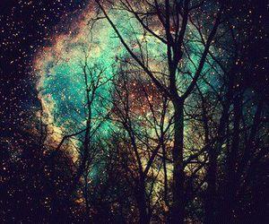 galaxy, tree, and stars image
