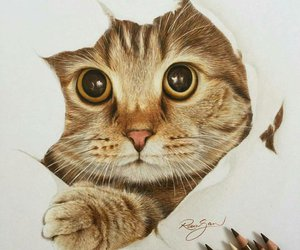 art, beautiful, and gato image