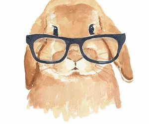 bunny, hipster, and rabbit image