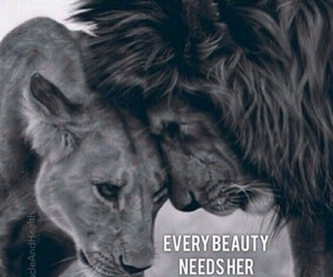 beast, beauty, and lion image
