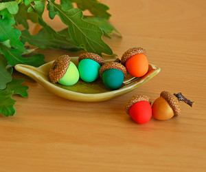 acorns, autumn, and nature lover image