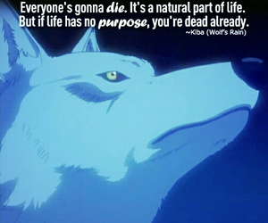 quote, wolf's rain, and anime image