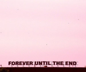 pink, forever, and quotes image