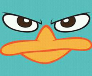 perry, personajes, and phineas y ferb image