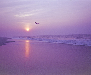 beach, photography, and aesthetic image