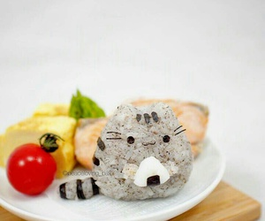 food, cute, and cat image