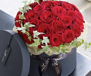 beautiful, box, and red roses image