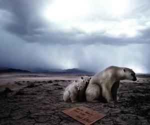 humano, contaminacion, and calentamiento global image