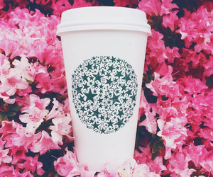 flowers, starbucks, and coffee image